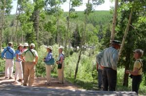 Thursday Birders a Aspen Overlook
