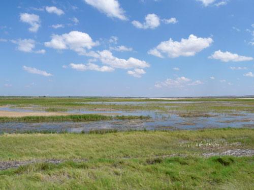 Ponds at Bitterlake Wildlife Refuge