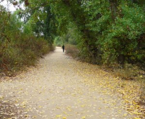 Sepulveda Basin Wildlife Reserve Path