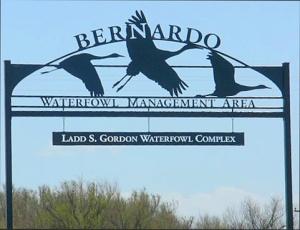 Bernardi Wildlife Management Area - Photo by Ray Reid