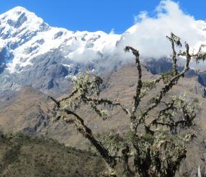 Peru-Abra-Malaga-landscape