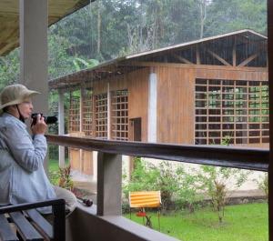 Peru-Amazonia-rain-birding