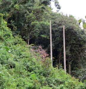 Peru-CRL-poles-for-future-e