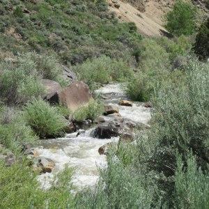 Rio Pueblo