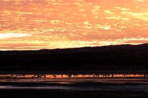 B-d-A-sunset-1-19-15