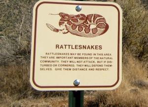 Embudo---rattlesnake