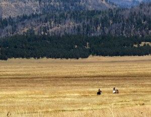 Valles-Caldera-horse-back-r