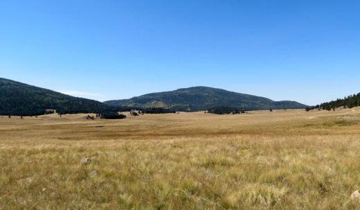view from north edge of caldera