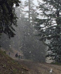OR-Ashland-Ski-snowing