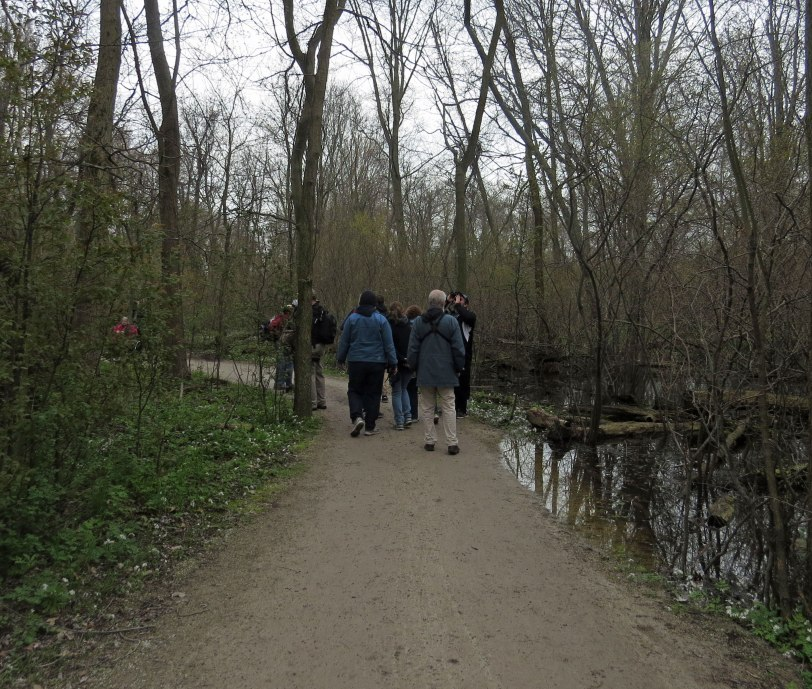 Pt-Pelee-trail-5-9-19