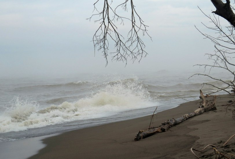 Pt-Pelee-waves-5-9-19