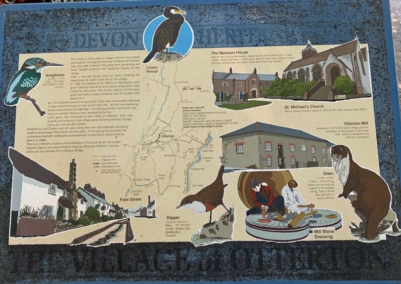 UK-Otterton-bird-sign-8-2-19