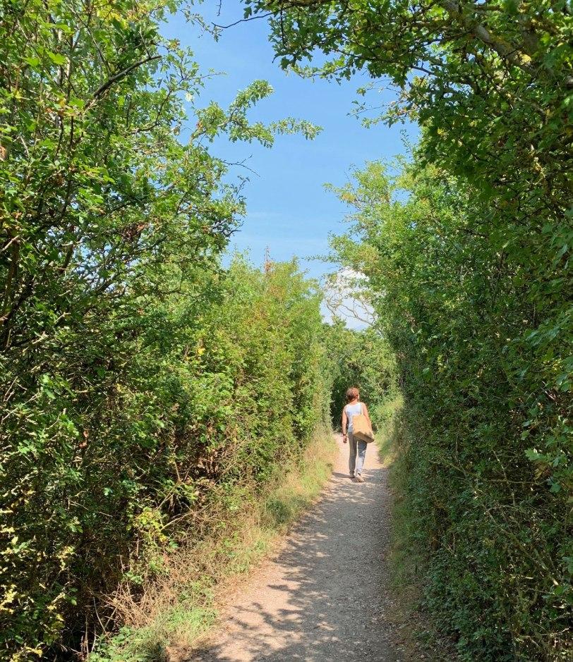 UK-River-Otter-trail-8-2-19